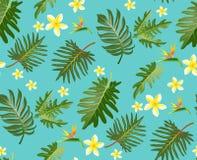 Modello tropicale senza cuciture con le foglie di palma per progettazione del tessuto o Immagini Stock
