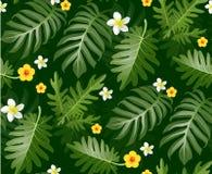 Modello tropicale senza cuciture con le foglie di palma per progettazione del tessuto o Fotografie Stock