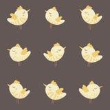 Modello variopinto d'annata senza cuciture sveglio stupefacente del pollo dell'uccello Fotografia Stock Libera da Diritti