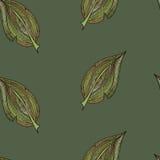 Modello variopinto delle foglie di autunno illustrazione di stock