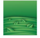 Modello verde del fondo con le foglie illustrazione di stock