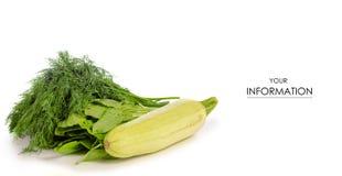 Modello verde dello zucchini dello ssorrel dell'aneto Immagine Stock