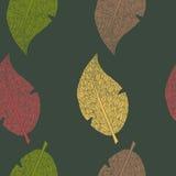 Modello verde di autunno con le foglie variopinte illustrazione vettoriale