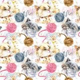 Modello watercolorseamless del gattino sveglio illustrazione vettoriale