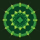 Modelo étnico en color verde Imágenes de archivo libres de regalías