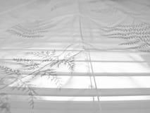 Modelo abstracto 9 del cordón Foto de archivo libre de regalías
