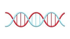 Modelo abstrato torcido científico vermelho e azul médico bonito de estrutura de hélice de genes do ADN em um fundo branco Vetor ilustração stock