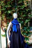 Modelo anónimo, Berlín, Alemania Foto de archivo