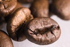 Modelo ascendente asado de la textura del cierre de la macro de los granos de café en el fondo blanco Fotos de archivo