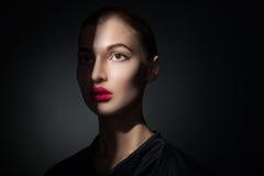 Modelo atractivo con los labios rosados y bastidor de la sombra en cara Foto de archivo libre de regalías