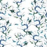 Modelo azul de las algas marinas Fotografía de archivo