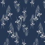 Modelo azul japonés del iris ilustración del vector