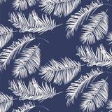 Modelo azul y blanco de las hojas de palma Foto de archivo libre de regalías