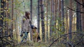 Modelo bastante femenino que juega con su animal doméstico - pastor alemán de los jóvenes - que camina en un bosque del otoño - l Fotos de archivo libres de regalías