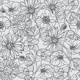 Modelo blanco y negro inconsútil con el flor de la fruta Imagen de archivo