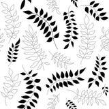 Modelo blanco y negro inconsútil con las hojas libre illustration