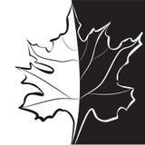 Modelo blanco y negro para la tarjeta decorativa Fotos de archivo