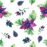 Modelo botánico de la acuarela de la Navidad Imagenes de archivo