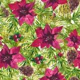 Modelo botánico de la acuarela de la Navidad Fotos de archivo