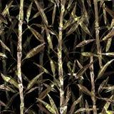 Modelo botánico inconsútil Ramas de un bambú en un fondo negro Modelo elegante para las materias textiles stock de ilustración
