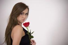 Modelo brasileño con una Rose Imagen de archivo