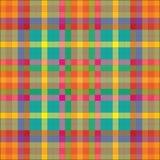 Modelo Checkered Foto de archivo libre de regalías
