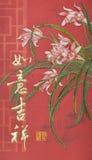 Modelo chino del Año Nuevo Imagenes de archivo
