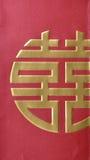 Modelo chino del Año Nuevo Fotos de archivo