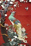Modelo chino del peapock Imagen de archivo