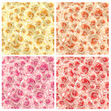 Modelo color de rosa inconsútil Fotografía de archivo libre de regalías