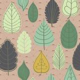 Modelo coloreado en tema de las hojas Autumn Pattern Imagen de archivo libre de regalías