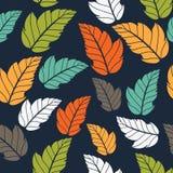 Modelo coloreado en tema de las hojas Autumn Pattern Fotografía de archivo libre de regalías