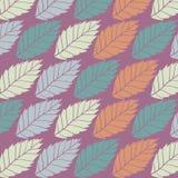 Modelo coloreado en tema de las hojas Autumn Pattern Imágenes de archivo libres de regalías