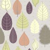 Modelo coloreado en tema de las hojas Autumn Pattern Fotos de archivo libres de regalías