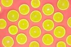 Modelo colorido de la fruta de rebanadas anaranjadas frescas en el fondo coralino foto de archivo libre de regalías