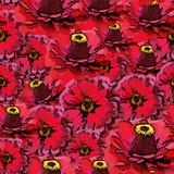 Modelo colorido inconsútil del vector con las flores rojas Foto de archivo