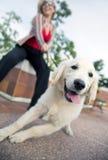 Modelo com cão Foto de Stock Royalty Free