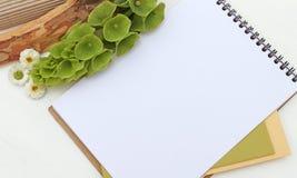 Modelo com flores verdes, bloco de desenho do bloco de notas Fotos de Stock Royalty Free