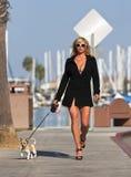 Modelo com seu cão Imagem de Stock Royalty Free