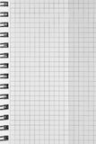 Modelo comprobado del fondo del cuaderno espiral, espacio abierto ajustado a cuadros vertical de la copia de la libreta, blocknot Imagen de archivo