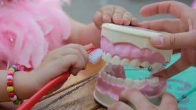 Modelo con el cepillo de dientes, cuidado dental de la enseñanza, cierre del mandíbula de la limpieza del dentista para arriba metrajes