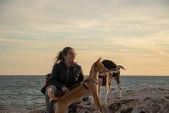 Modelo con la chaqueta negra al aire libre en una puesta del sol con los animales domésticos fotografía de archivo libre de regalías
