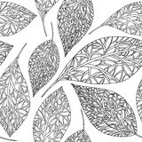 Modelo con las hojas Imágenes de archivo libres de regalías