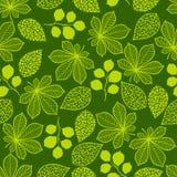 Modelo con las hojas verdes estilizadas Fotos de archivo