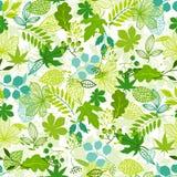 Modelo con las hojas verdes estilizadas Imagenes de archivo