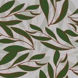 Modelo con las hojas y las líneas Fotografía de archivo