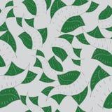 Modelo con las hojas y las líneas Foto de archivo libre de regalías