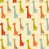 Modelo con las jirafas Fotos de archivo libres de regalías