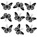 Modelo con las mariposas negras grandes Imágenes de archivo libres de regalías