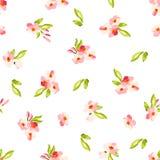 Modelo con las pequeñas flores rosadas Foto de archivo libre de regalías